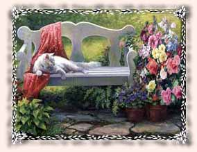 Picture of kitty sitting on bench and flowers